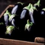 aubergine brule graisse