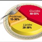 Répartition des macros-nutriments : 1/3