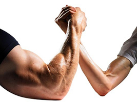 Testostérone et musculation