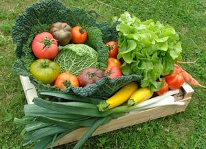 Les légumes, une alimentation japonaise saine pour ne pas grossir