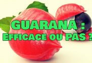 guarana brule graisse