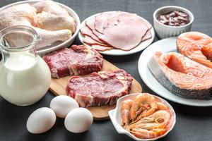 Les protéines font-elles grossir ou mincir