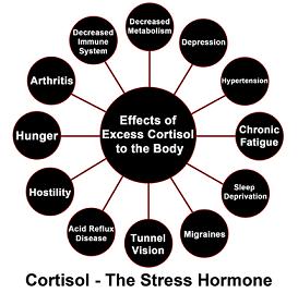 Un dosage d'Ashwagandha pour diminuer cortisol