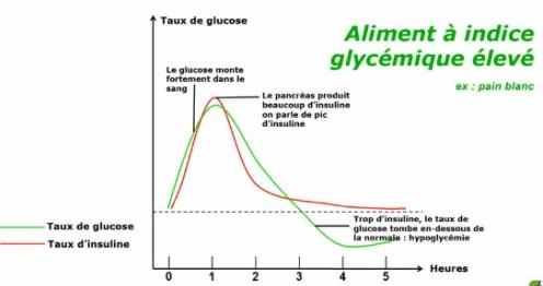 insuline et glycémie