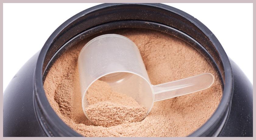 protéine bruleur de graisse