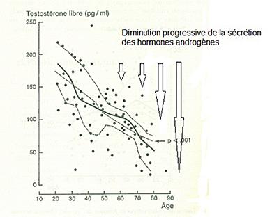 Chute de testostérone