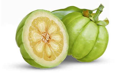 cambogia fruit
